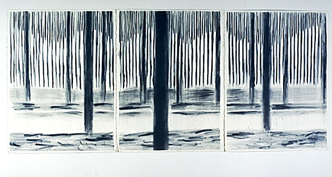 Bach's Forest by Richard Preston