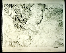 Mould Drawing 7 by Richard Preston